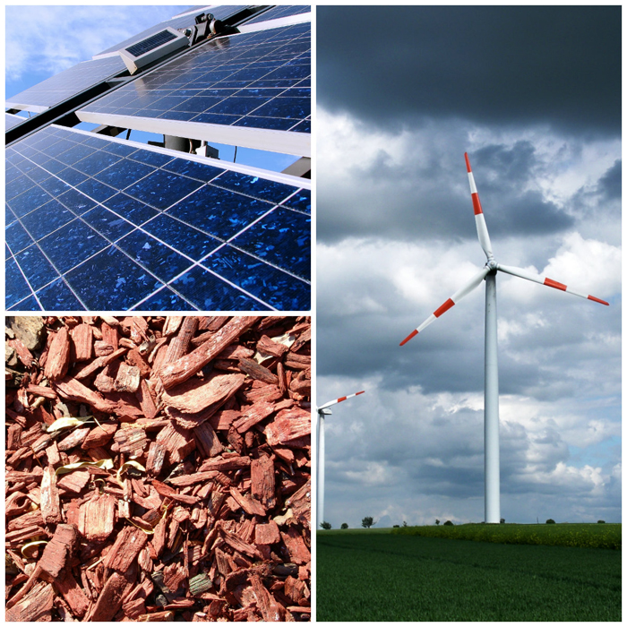 Wind, solar and biomas