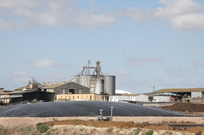 Biogas plant in South Africa boosts energy production a year after construction