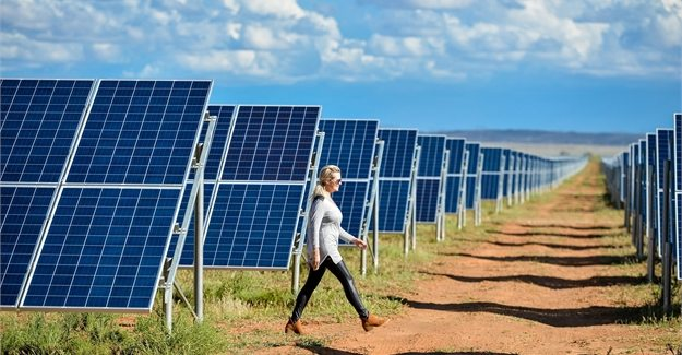 South Africa unveils newly constructed largest solar farm in southern hemisphere