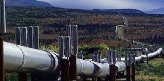 Construction of the Tanzanian-Ugandan oil pipeline on track