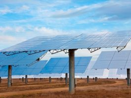 Global energy firms eye solar PV construction projects in Morocco