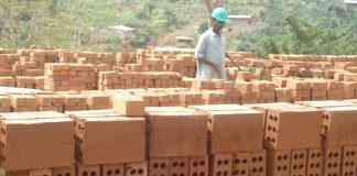 Newly constructed brick factory in Cameroon launched
