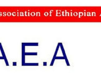 Association of Ethiopian Architects says quality architectural designs Crucial for Urbanization
