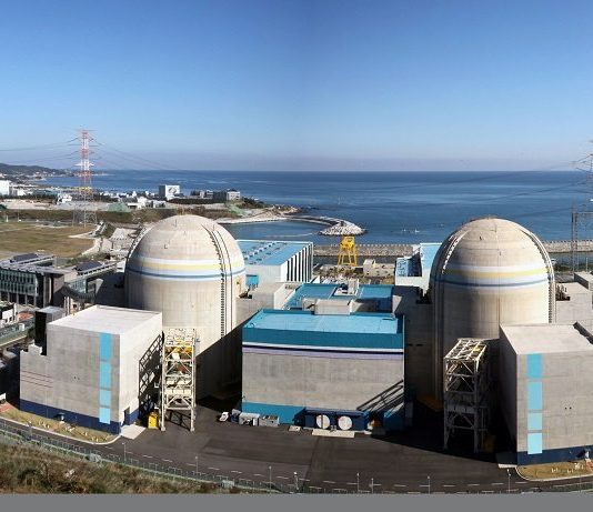 South Africa's nuclear plan to commence in earnest