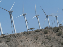 Kenya maps out wind and solar project sites for investors