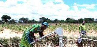 Stakeholders stresses concerted efforts to end Tanzania's water scarcity