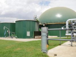 Africa's first grid connected biogas farm in Kenya powers up