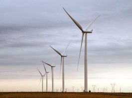 Loeriesfontein and Khobab wind farms in South Africa near completion
