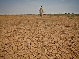 Water shortage hit Eastern Africa countries
