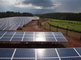 Xago Africa mulls Kenya's first large-scale solar energy storage battery