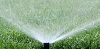 Green water technology market in South Africa expands