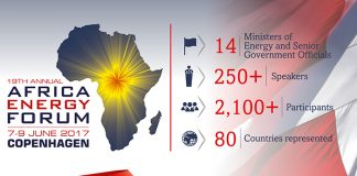 Nine African Ministries to participate at the annual Africa Energy Forum in Copenhagen this June
