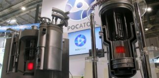 Rosatom to participate in tender for construction of NPP in South Africa