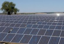 Dangote Industries,Blackstone to build 100 MW solar plant in Nigeria