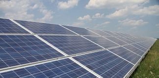 South African- Phelan Energy Group wins tender to construct a 50 MW solar PV in India