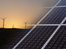 Renewable energy sector generates 9.8 million jobs worldwide