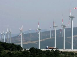 Tarfaya wind farm to counterpoise 900,000 tons of CO2 yearly