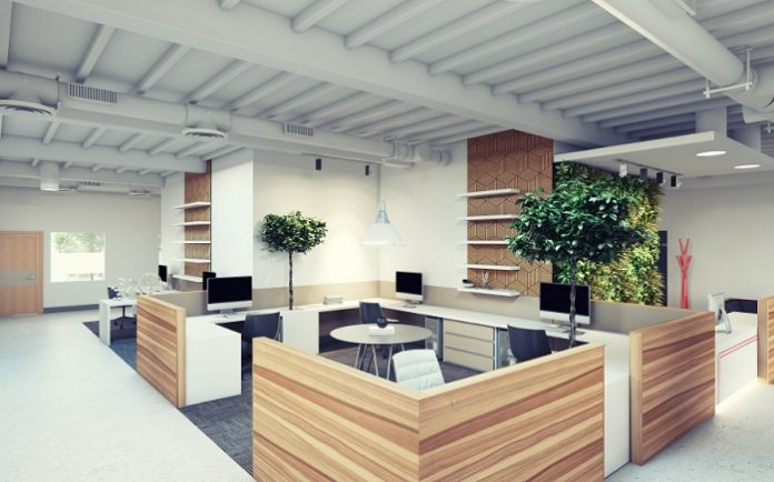 green office design with wood dividers
