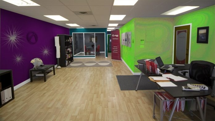 Green and purple painted office walls