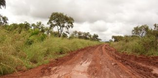 Tanzania Launches New Agency to Improve Rural Roads