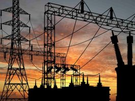 Nigeria to generate 14MW electricity from Cross River bio-diesel project