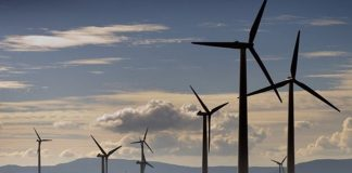 SAWEA secures US $3.5bn for wind energy sector