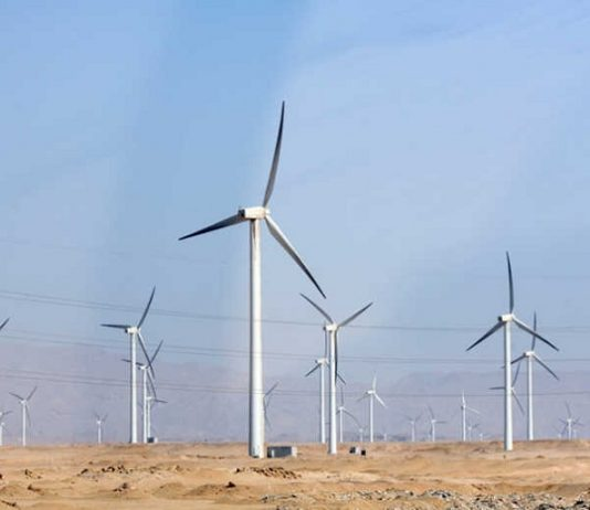 South Africa to begin construction of 110 MW Perdekraal East wind farm