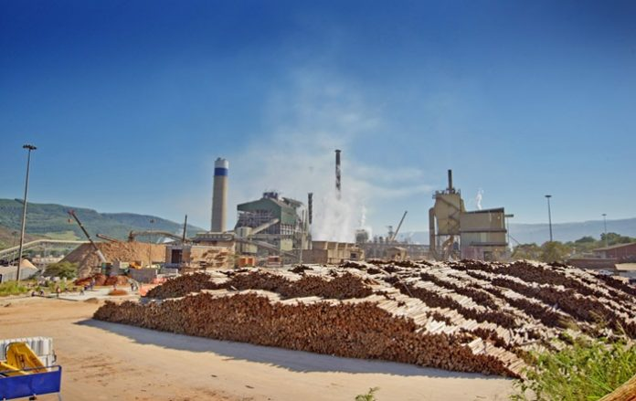 South Africa begins construction on 25 MW biomass power project