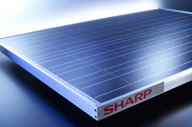 Sharp energises African PV market with expansion of solar business