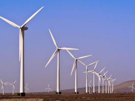 Egypt signs PPA for 250Mw wind farm