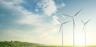 South Africa to receive US $80m loan for green economy development